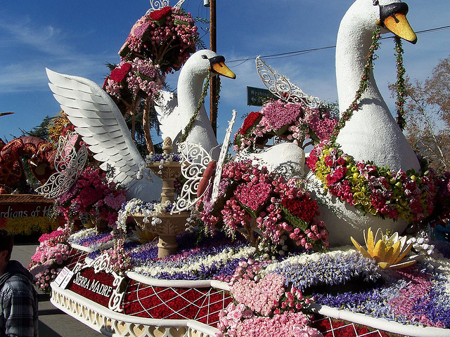 Stunning swan float in the 2008 Rose Parade.  Photo by Matt Sherwood