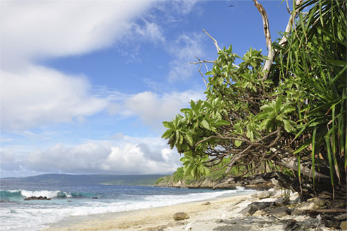 A beach on Christmas Island