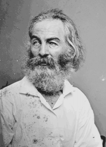 Walt Whitman during the Civil War. (Library of Congress)