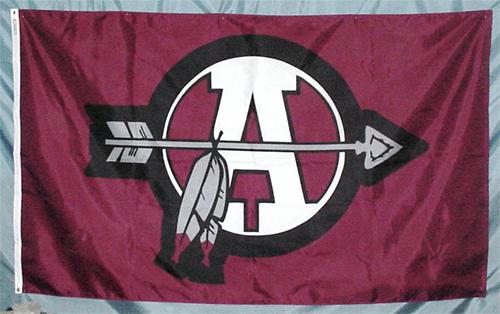 School Logo Flag
