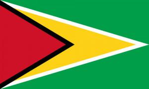 Smith designed Guyana's flag. (wikipedia.org)