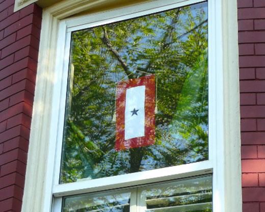 blue star banner window