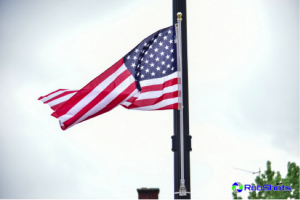 Light pole flag set
