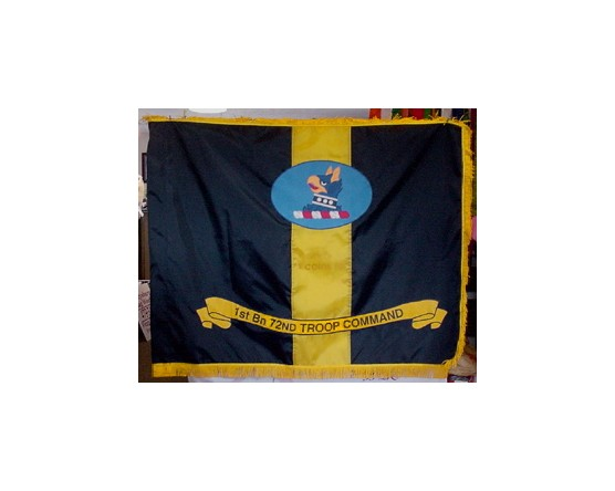 1st Bn 72nd Troop Command Flag