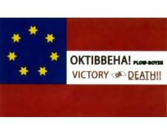 MS Infantry Okitbbeha Plow Boys Flag - 3x5'