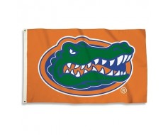 Florida Gators Outdoor Flag - Gator on Orange