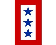 Service Star Magnet (3 Blue Stars)