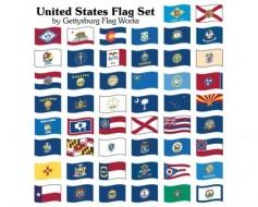 State Set (United States) Flag - Indoor - 50
