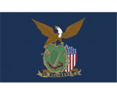 9th CT Irish Brigade Regiment Flag - 3x5'
