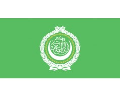 Arab League Flag - 3x5'