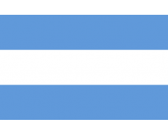 Argentina Flag - without seal