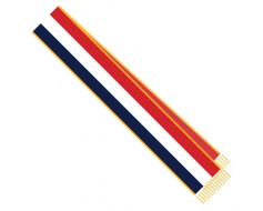 Red, White & Blue Parade Sash