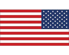 American Flag Sticker (Reverse)