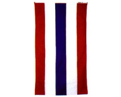Patriotic Pleated Half Fan Set