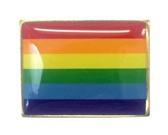 Pride Lapel Pin (Single Rectangle Flag)