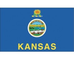 Kansas Flag - Outdoor