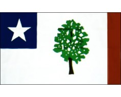 Mississippi Flag 1861 - 3x5'