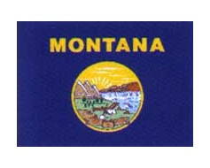 Montana Reflective Sticker