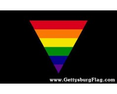 Rainbow Triangle Flag