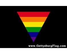 Rainbow Triangle Flag
