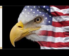 U.S. Eagle Flag - 3x5'