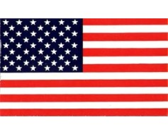 American Flag Sticker - Sticky Front