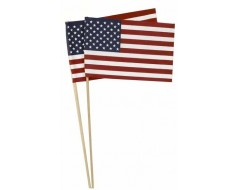 American Stick Flag without Spear Tip