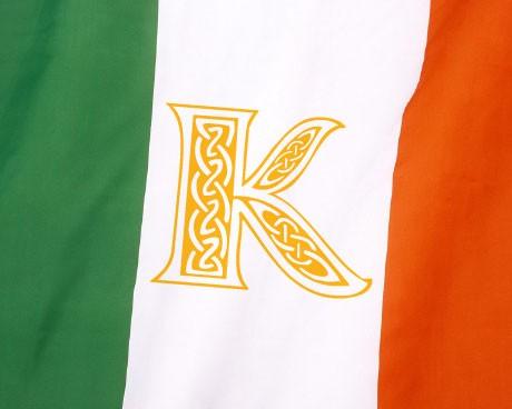 Customizable Ireland flag