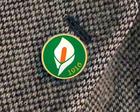 Easter Rising Lily Pin