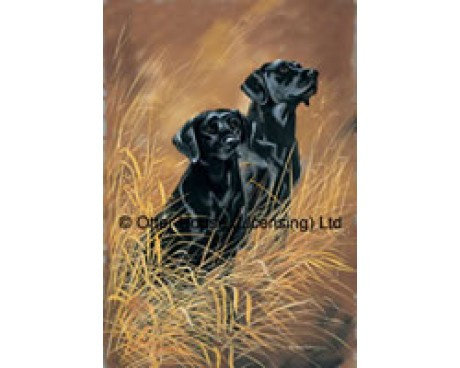 Black Labrador Flag (Photo)