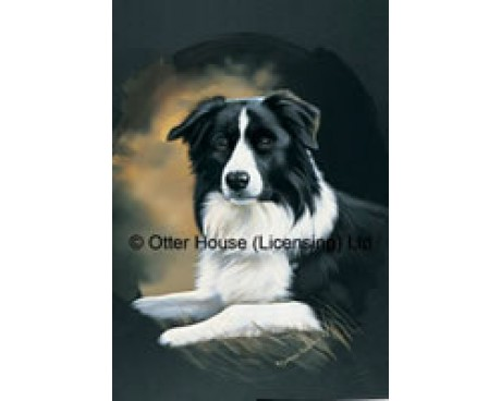 Border Collie Flag (Painting)