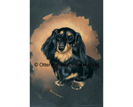 Longhaired Dachshund Flag