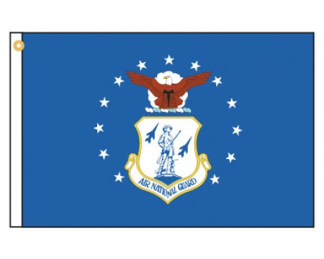 Air National Guard Motorcycle Flag
