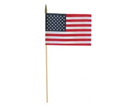 Economy USA Stick Flag