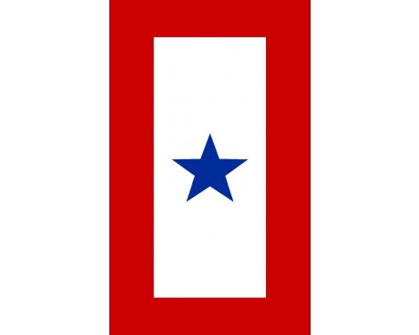 Service Star Sticker - 1 Blue Star