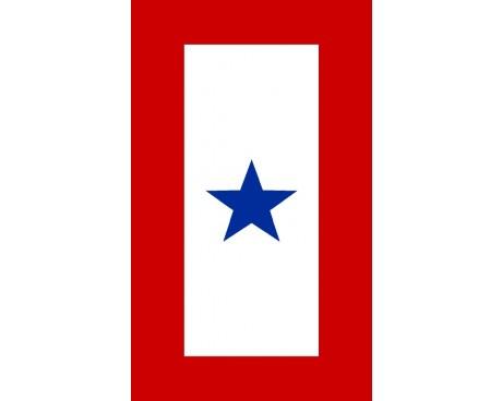 Service Star Sticker - 1 Blue Star