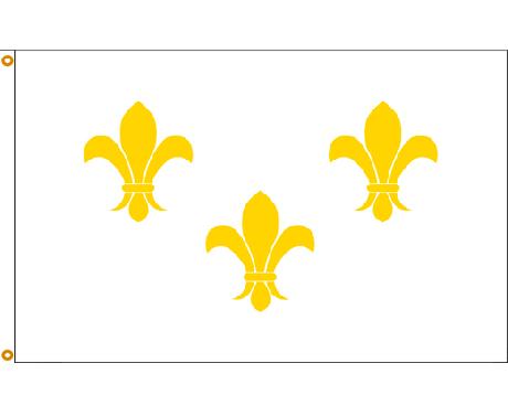 Fleur-de-lis Flag (White 3)