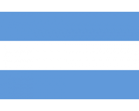 Argentina Flag (No Seal)