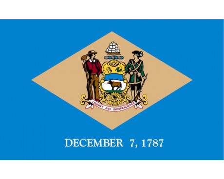 Delaware Flag - Outdoor