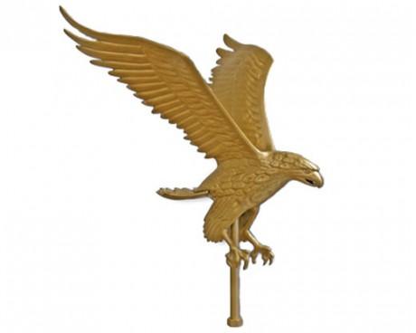 """Eagle, 10"""" Gold"""
