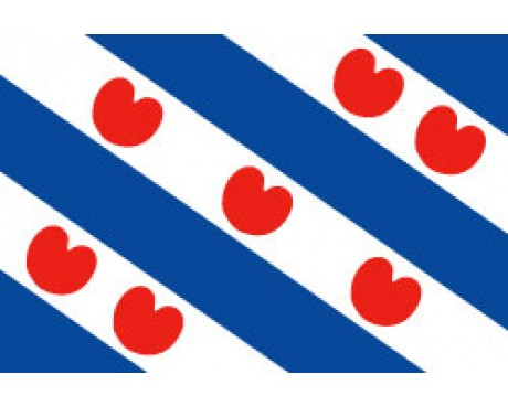 Friesland Flag (Holland)