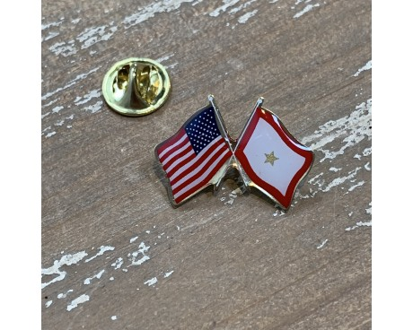 SERVICE STAR (1 GOLD STAR) LAPEL PIN (DOUBLE WAVING WITH USA)