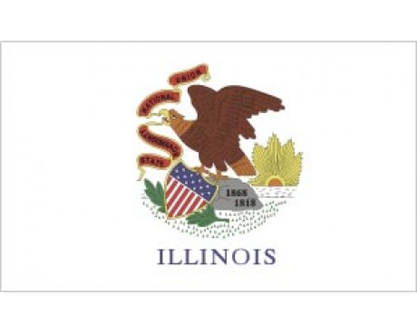 Illinois Flag - Outdoor