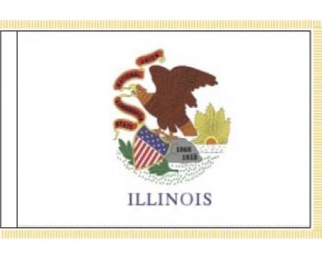 Illinois Flag - Indoor