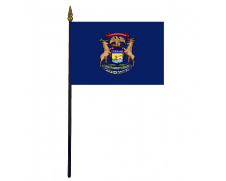 Michigan State Stick Flag