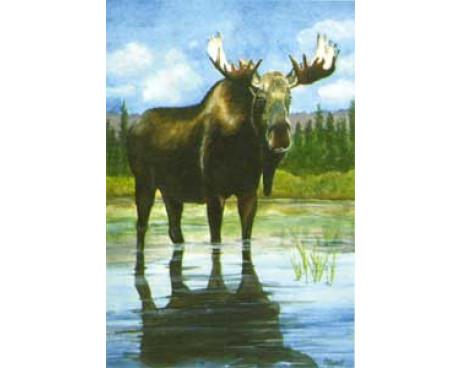 Moose House Banner