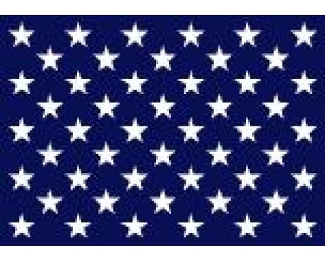 Navy Jack US Flag