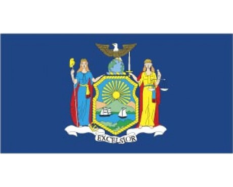 New York State Flag - Outdoor