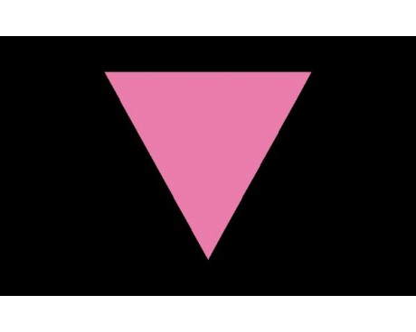 Pink Triangle Flag