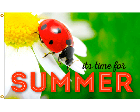 Summer Ladybug Flag - 3x5'